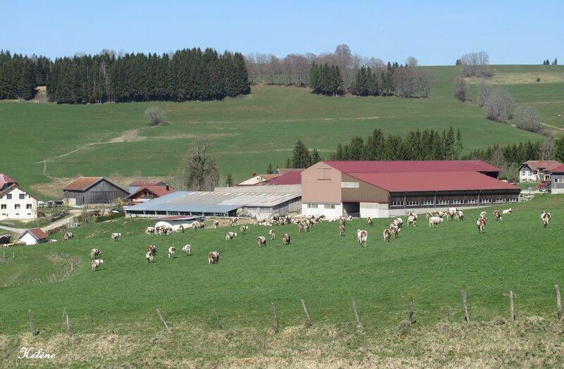 Excursion du 19 avril 2018  aux Hôpitaux-Neufs dans le Haut-Doubs