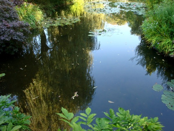Giverny, le jardin de Monet 7