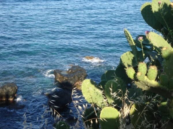 Catane, Isole Ciclopi 4jpg
