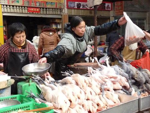 Chine - Yunnan