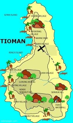 23 Juillet - Tioman... plus têtue qu'un âne Corse !