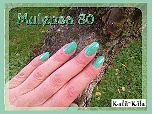 mulensa-80-3.gif