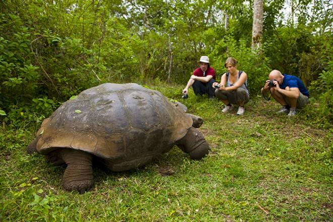 Photos-Pays du Monde 3:  Îles Galapagos: un paradis sur terre