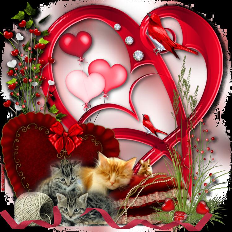 *** 05 - Un Amour de Chat ***