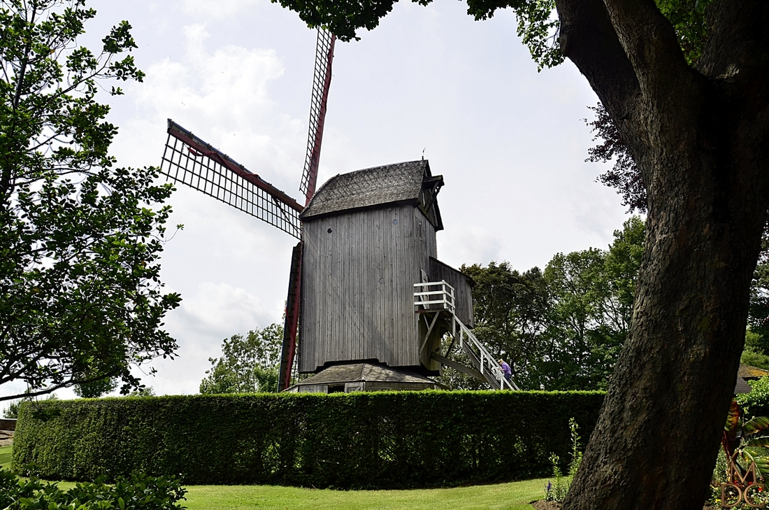 Casteelmeulen, Cassel (59 Nord)