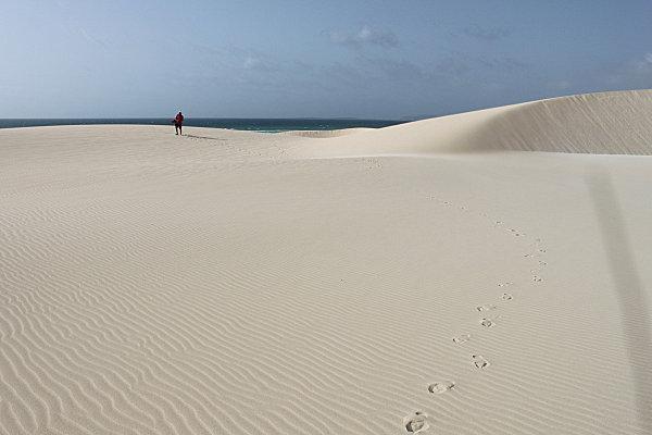 Boa Vista, l'île aux dunes8