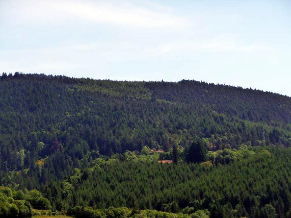 Vézelay - Le Puy en Velay 2011 - Lavoine - Chabreloche