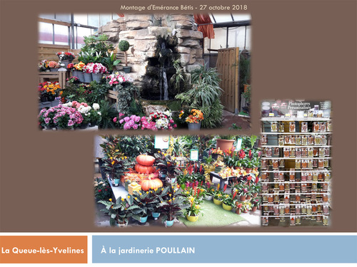 A la jardinerie Poullain de La-Queue-lèz-Yvelines