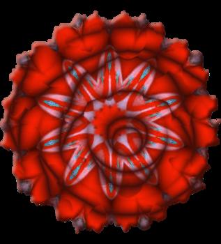 Fleurs tissu série 2