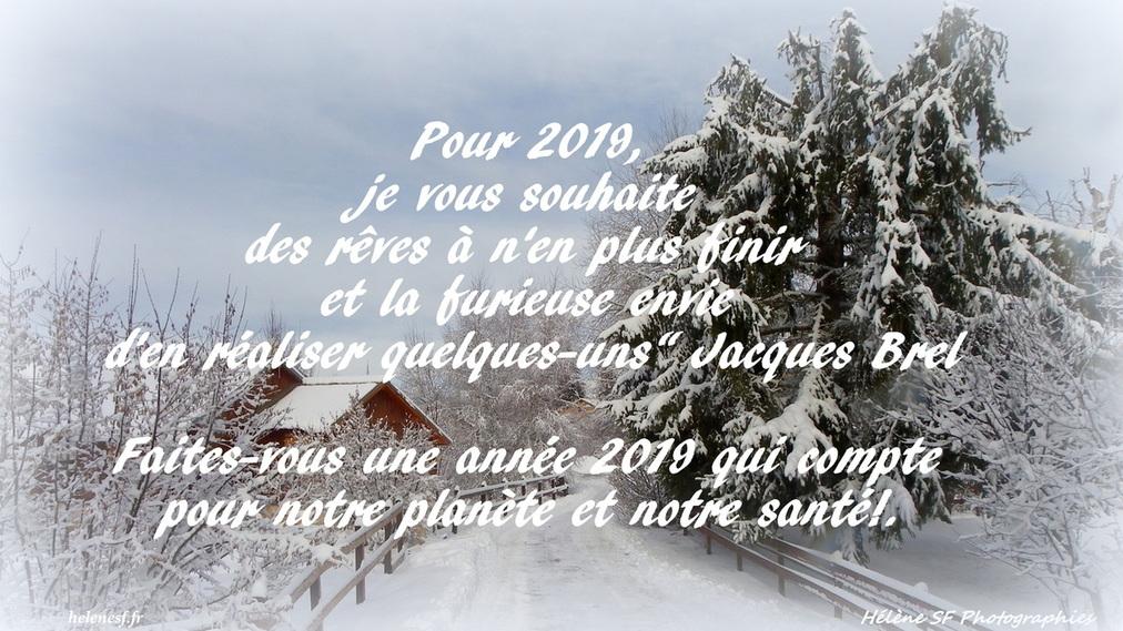"""Résultat de recherche d'images pour """"images gratuites de voeux bonne année 2019"""""""
