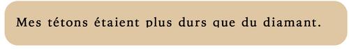 Le défloreur, tome 1, de Victoria Quinn