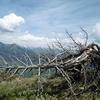 Descente de la crête Nord du pic d\'Arrès