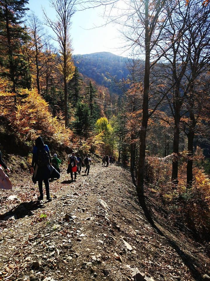 Pratiquer - Encadrer - Organiser des activités de marche et de randonnée pédestre