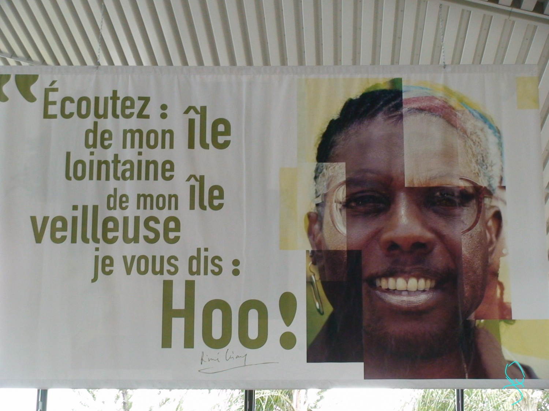 Cent Poèmes Daimé Césaire Jackyquetzalyne Mon Espace Vert