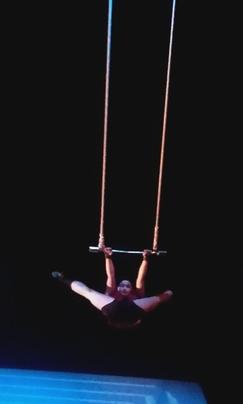 CM1 A spctacle de cirque pour noel