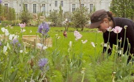 """Le bien-être de nombreux internautes du Monde.fr passe par le contact avec la nature qui demeure un """"cadeau"""" aux bienfaits inestimables."""