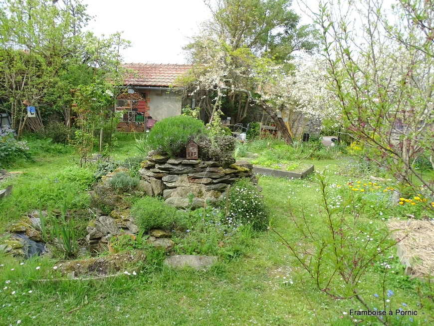 Pornic, Jardin Naturel de l'Association Hirondelle - Avril 2019