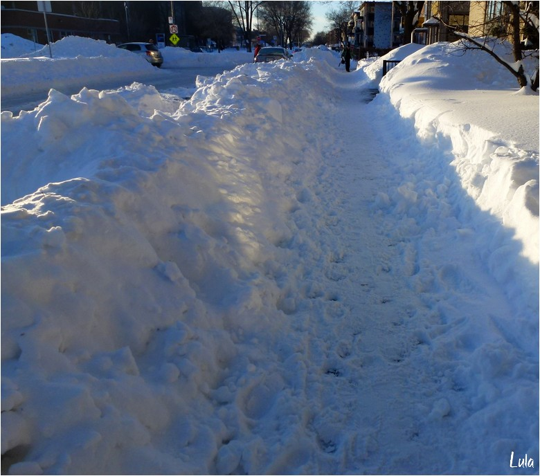 Le lendemain de la tempête de neige