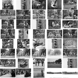 Planche Contact 6