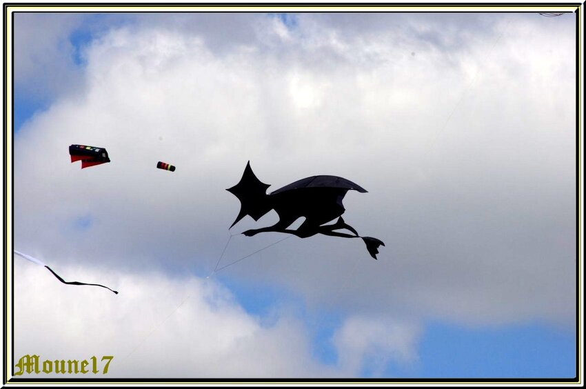 Cerfs-volants à Chatelaillon pendant le week-end de Pâques