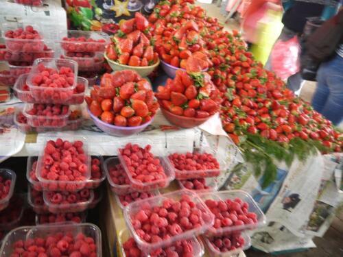 Belles fraises et framboises