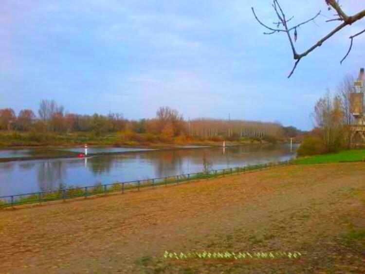 parc des Vergers a Langon (Gironde)un lieu de promenade et de détente