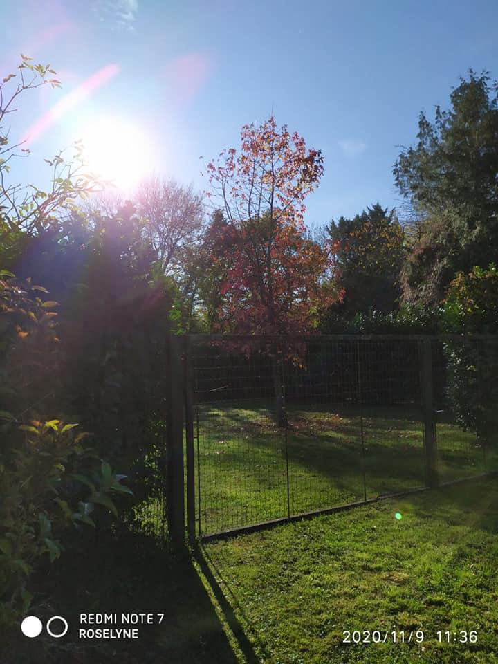 L'image contient peut-être: ciel, arbre, herbe, plein air et nature, texte qui dit 'REDMI NOTE DME7 7 ROSELYNE 2020/11/9 11:36'