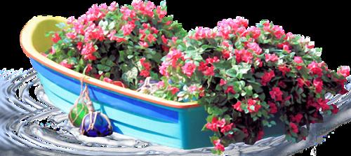 Ornements Floraux Série 34