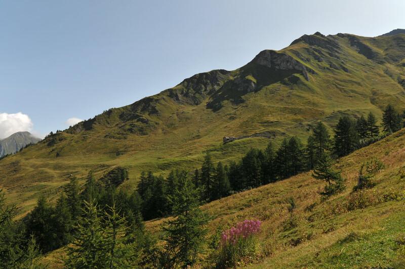 Randonnée au Val Ferret (5)