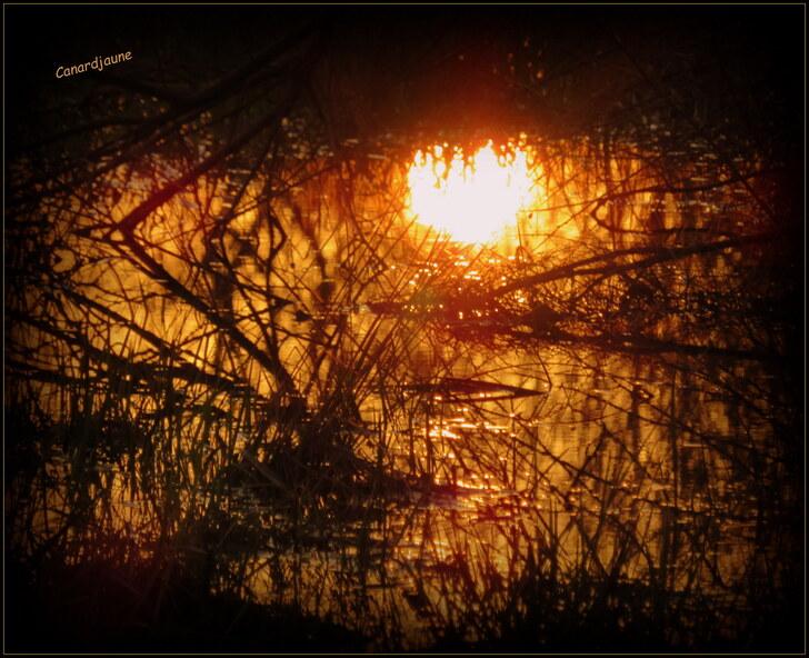 Couchant de soleil incendiaire