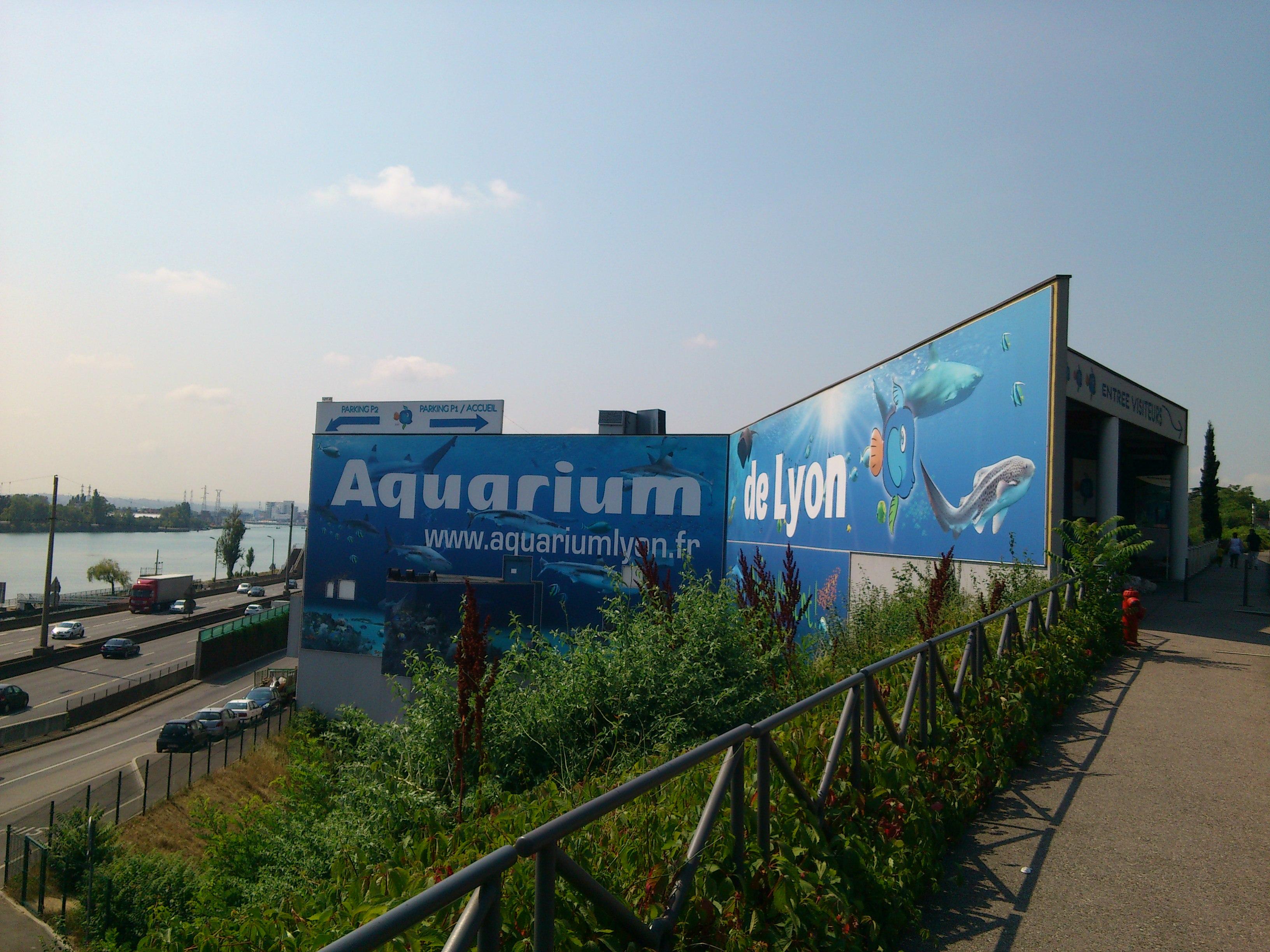 sortie 224 l aquarium de lyon 2014 ecole jeanne d arc la voulte