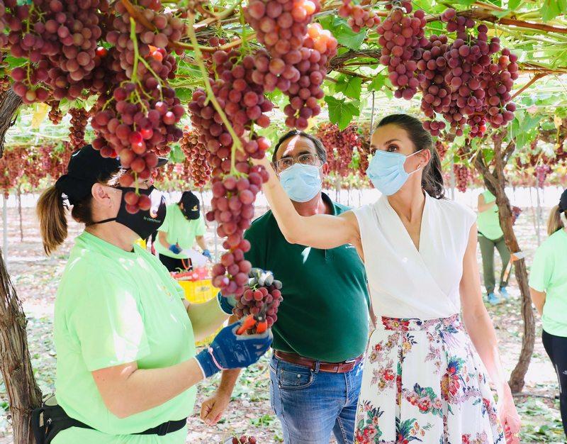 """Cooperativa de frutas """"La Carrichosa"""" en Cieza"""