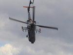 AH-64D Apache Solo Display Pays-Bas