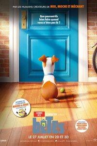La vie secrète que mènent nos animaux domestiques une fois que nous les laissons seuls à la maison pour partir au travail ou à l'école.