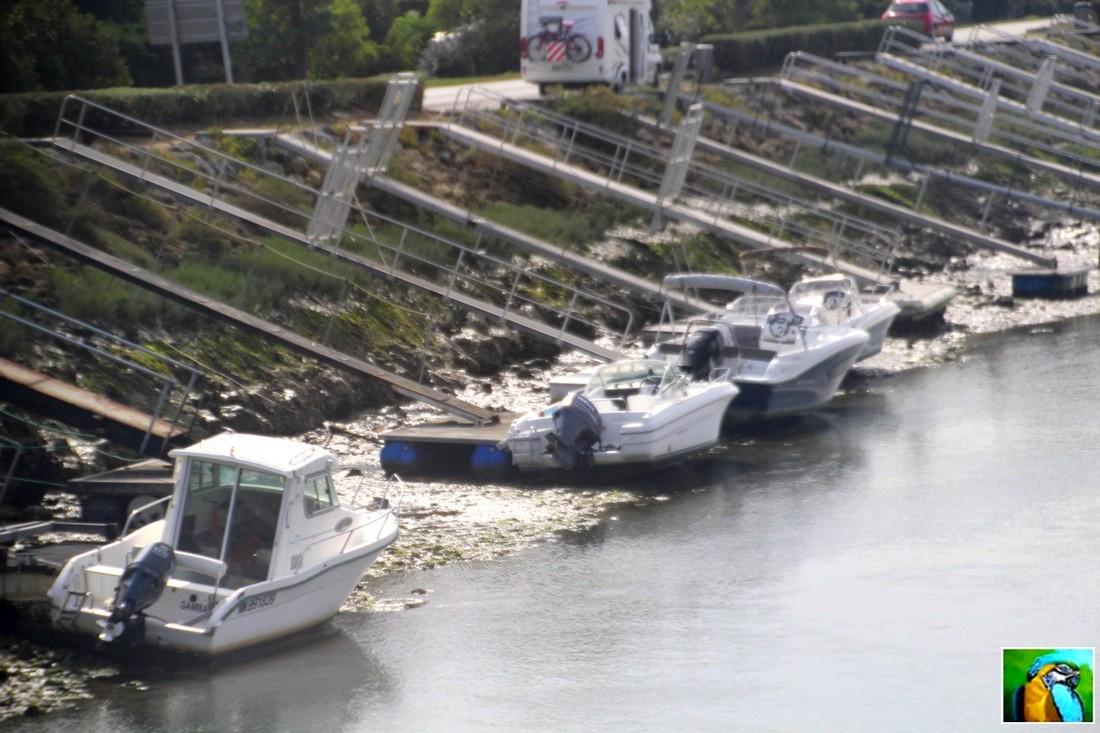 Balade Île d'Oléron en septembre