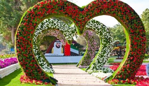 Al Aïn paradise