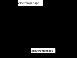 électrons partagé