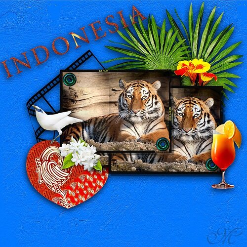 Remember Indonesia
