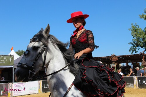 festival andalucia à oupeye 2016
