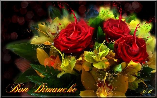 Bonne Journée mes Amies