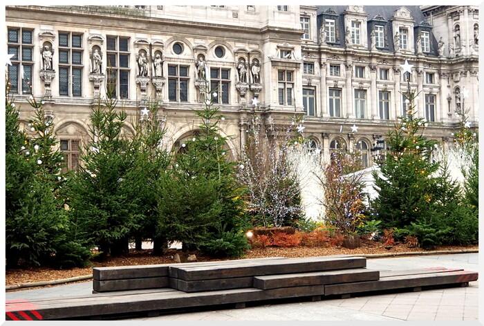 C'était à Noël 2018 Hôtel de Ville de Paris.