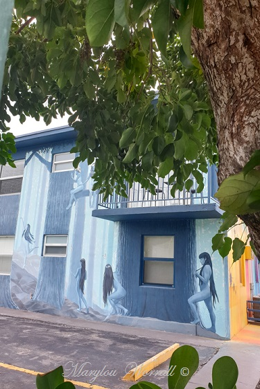 Floride : Miami Wynwood Walls and art gallery 1/3
