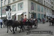 Le coeur de Vienne 2