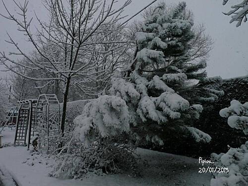 neige-20-janv-2013--32-.jpg