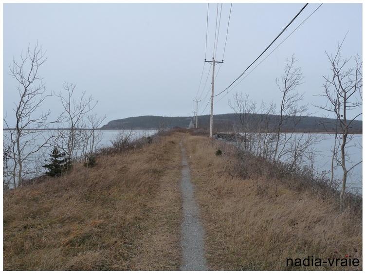 La photo de la semaine: un paysage avant la neige. (Communauté d'Amartia)
