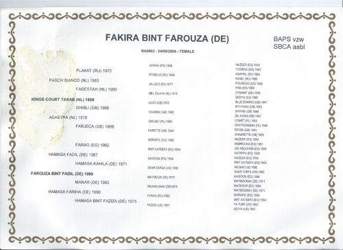 Welcome Fakira Bint Farouza!