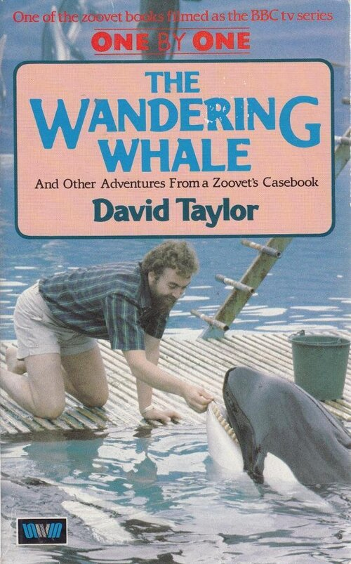 David Taylor - The Wandering Whale (1985)