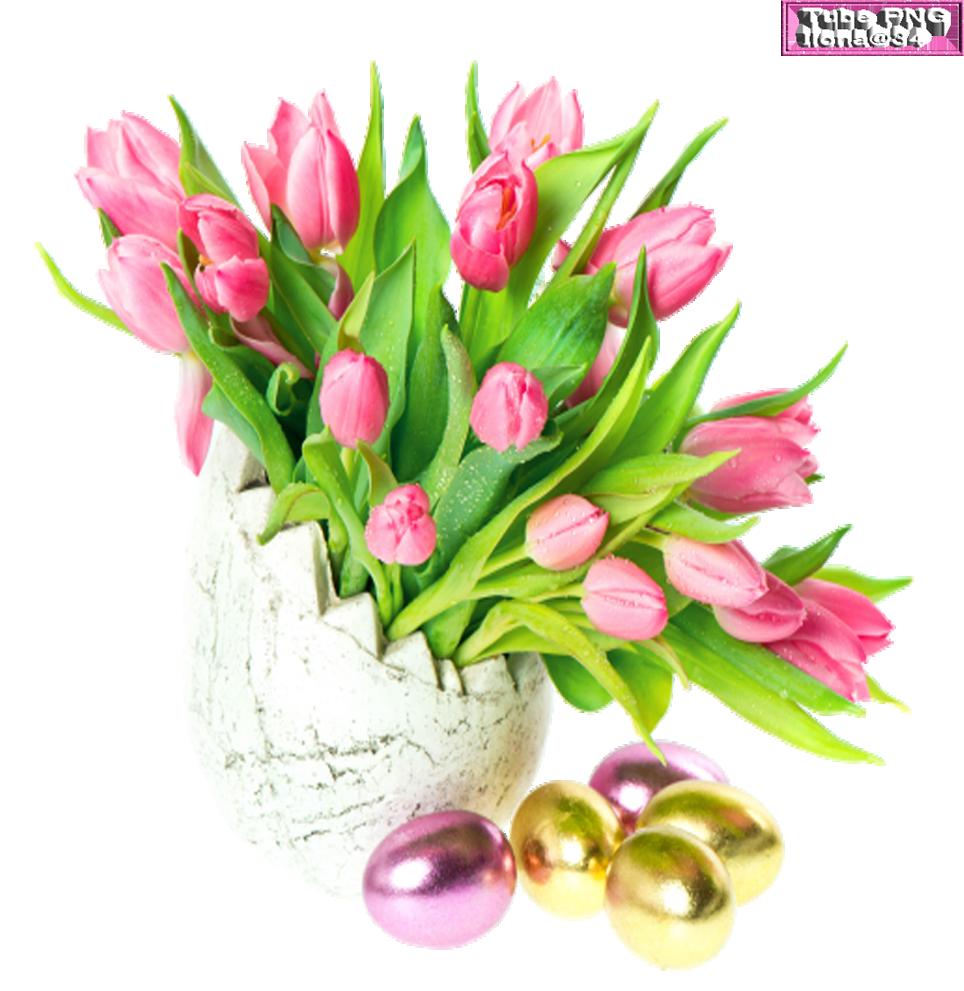 Fleurs de pâques