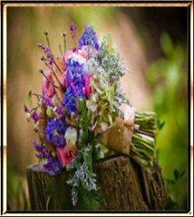 Fleur du jardin
