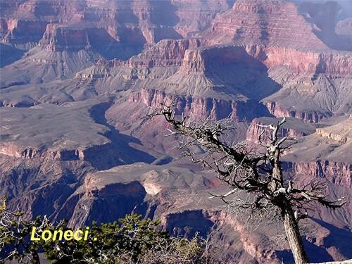 Le  Grand  Canyon .